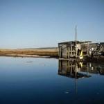 Drakes Estero oyster farm a natural fit