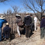 The Return of the Natives: Designing and Planting Hedgerows for Pollinator Habitat to Bring Wild Diversity Back to Farms and Gardens