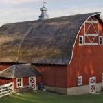 The Origins of Heritage Foods Revivals 1980-1985