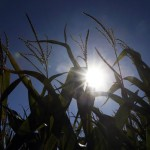 Water rationing for farmers? It's on the horizon