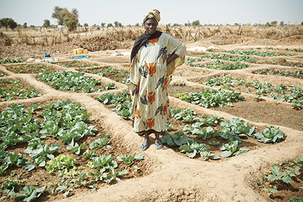 Fatou Mata Juide Ba uses well water to grow her vegetables in Bonjisinthiang Village, Senegal.