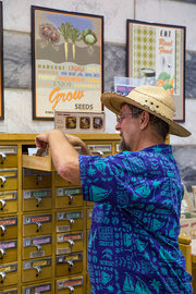 Gary Paul Nabhan, who helped start an organization that saves and distributes Southwestern heirloom seeds, looks over the seeds available at the Tucson branch of the Pima County Public Library. Credit Chris Hinkle for The New York Times
