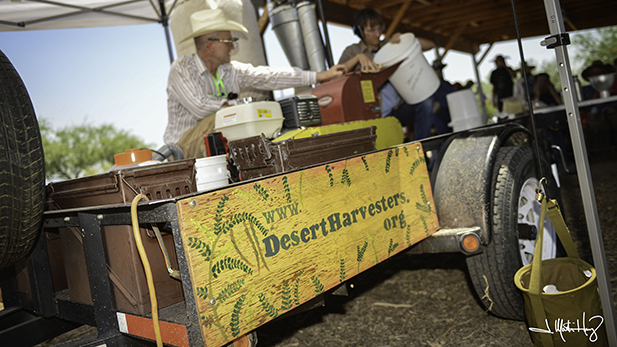 The Desert Harvesters take their hammermill to neighborhoods and festivals. The dried mesquite pods go in the hopper and come out the other end as flour.
