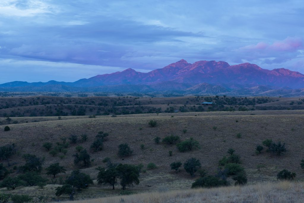 Sunrise on the Santa Rita Mountains north of the town of Patagonia, Arizona, 18 miles from the border to Mexico. June 30 and July 5, 2016, Arizona. ©Bill Hatcher 2016