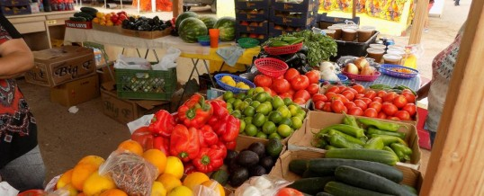 UA Report Details Tucson's Excellence in Providing Food Diversity and Access