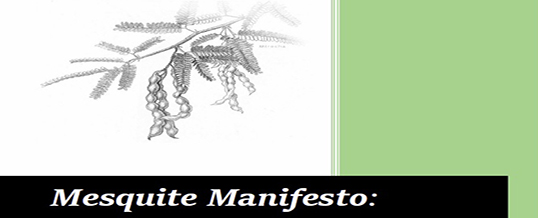 Mesquite Manifesto: A Collaborative Vision for the Borderland